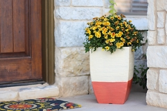 Dipped Fall Planter