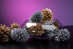 Glittered holiday pine cones