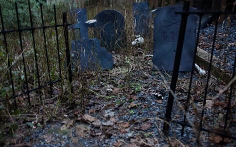 Backyard Graveyard Scene