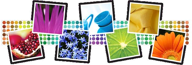 Color Paint spray paint colors | spray paint color center | krylon
