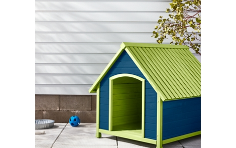 Painted dog house